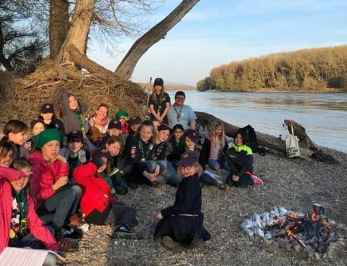 Wichtel erkunden den Nationalpark Donauauen
